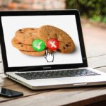 What are browser cookies when accessing a website
